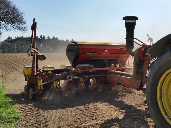 Vaderstad Maize Drilling